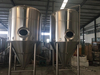 40bbl Stainles Steel Fermenter for Craft Brewery
